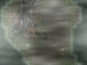Il bosco che ricopre gran parte dell'isola e attraverso il quale passerete molte volte.